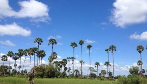 Scenic Land with Great Views Over Angkor Golf Course