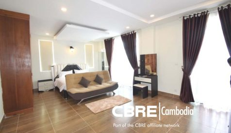 Brand New One Bedroom Apartment Boeung Trabek